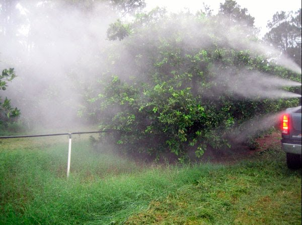 Уничтожение насекомых с помощью горячего тумана